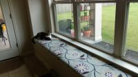 Custom Window Seat Cushion in Our New Dining Room