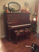 Riley Piano Bench Cushion