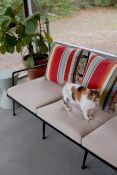 Patio Sofa Cushions in Sunbrella Spectrum Sand