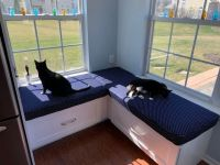 Window Seat Cushions with Cats